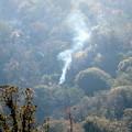 Photos: Deer Fire (18)