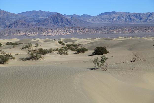 Photos: Death Valley NP (4)