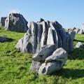 カルストの岩