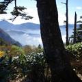 Photos: 登山道の眺め