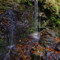 Photos: 秋が垂水