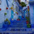 Photos: 色色の階段