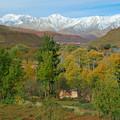 Photos: 色付く村と雪山
