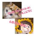 Photos: minne にて発売中♪