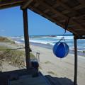 写真: 掘立て小屋のビーチボール