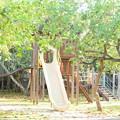 Photos: 朝の公園