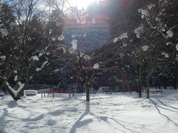 冬の散歩道#2
