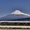 Photos: N700系と富士山