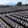 写真: 壺畑と桜島