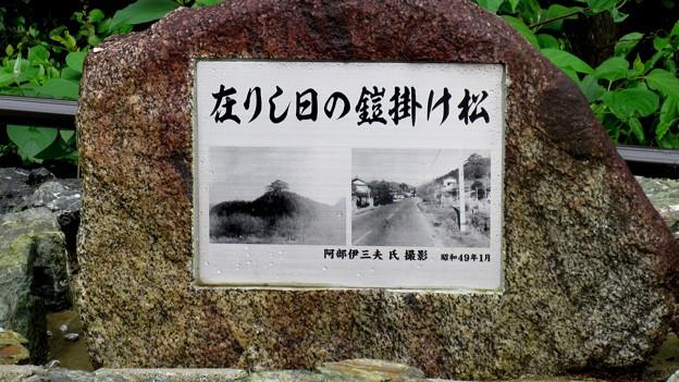 長篠設楽原合戦場(新城市)中山砦(中山砦歴史公園)