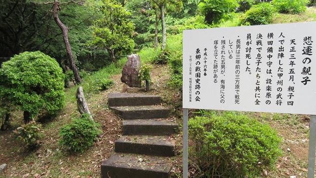 長篠設楽原合戦場(新城市)横田備中守綱松之墓