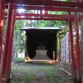 牛久保のナギ(豊川市)