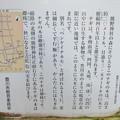 Photos: 牛久保のナギ(豊川市)