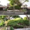 Photos: 一色城(豊川市)保障外壁の跡(土塁)※私邸内