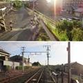 写真: 一色城(豊川市)