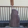 犀ヶ崖古戦場(浜松市)鼠小僧次郎吉墓
