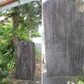根洗松(浜松市)
