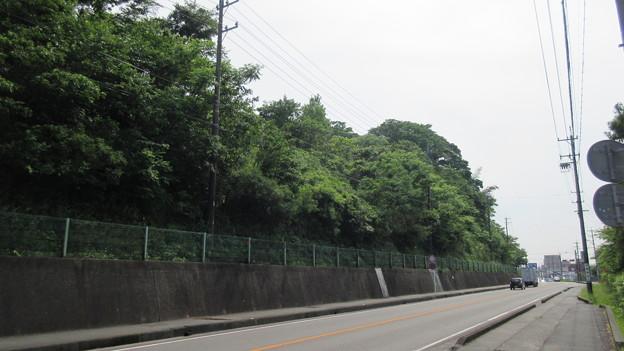 懸河古城(掛川市)