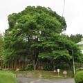 Photos: 明知城/明知陣屋(恵那市明智町)陣屋跡