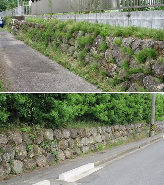 加納城(岐阜市営 加納公園)二の丸御殿