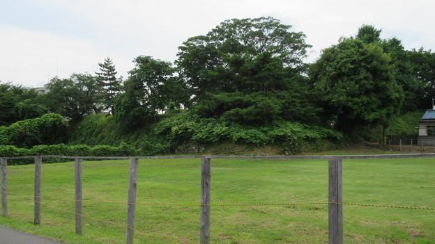 加納城(岐阜市営 加納公園)二の丸より大手枡形