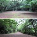 Photos: 小牧山城(小牧市営 史跡小牧山公園)