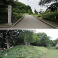 Photos: 小牧陣城(小牧市営 史跡小牧山公園)大土塁