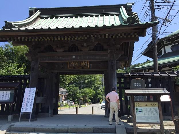 妙本寺(鎌倉市)総門