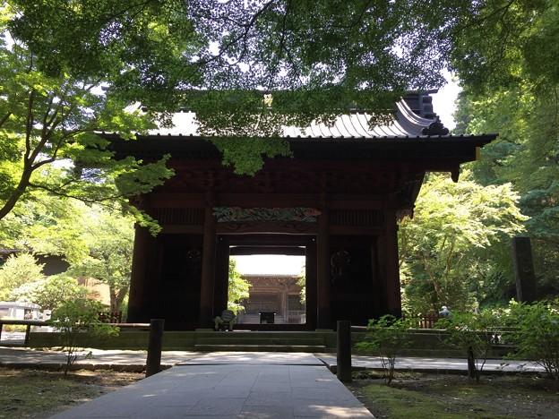 妙本寺(鎌倉市)二天門