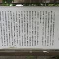 写真: 蛭ヶ小島(伊豆の国市)