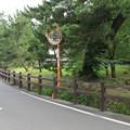 写真: 江川邸・韮山代官(伊豆の国市)水堀跡