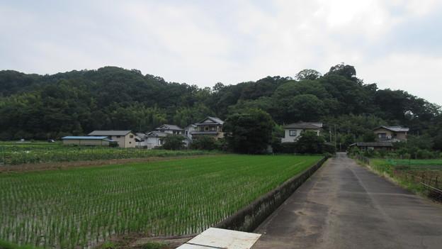 江川砦(伊豆の国市)