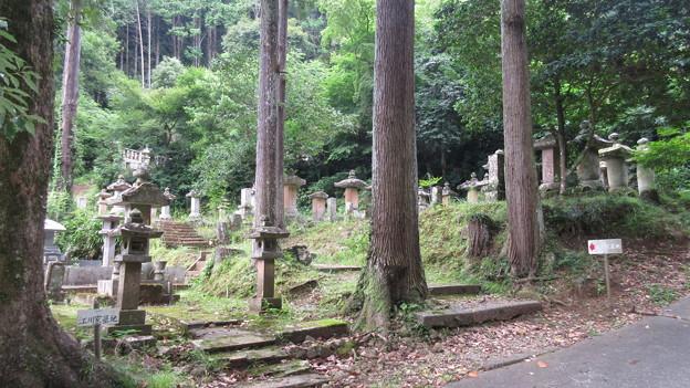 本立寺(伊豆の国市)江川家墓地