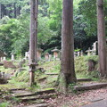 Photos: 本立寺(伊豆の国市)江川家墓地