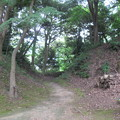 韮山城(伊豆の国市)権現曲輪・二の丸間堀切