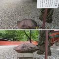 Photos: 富士山本宮浅間大社(富士宮市)火山弾
