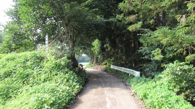 長井坂城(渋川市・昭和村)東南虎口