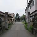 Photos: 正覚寺(沼田市)参道