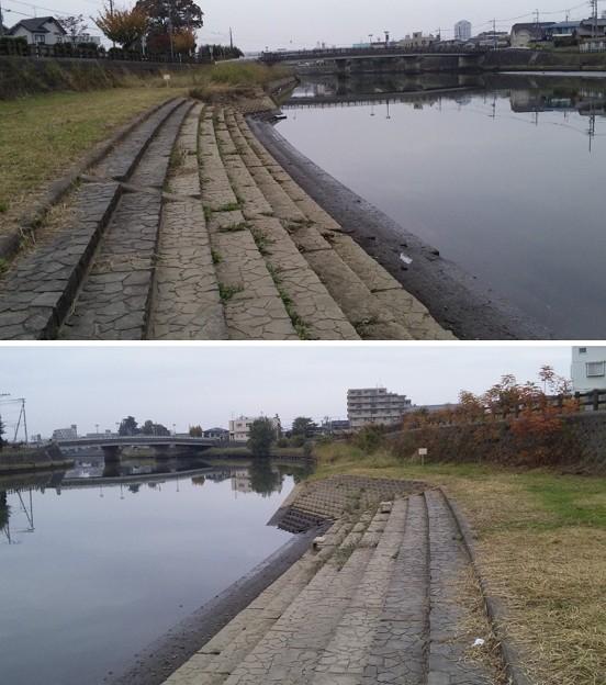 綾瀬川(越谷市)出羽堀西より