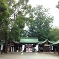 Photos: 大宮八幡宮(杉並区)神門