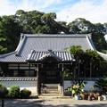 Photos: 小山城/能満寺(吉田町)本堂