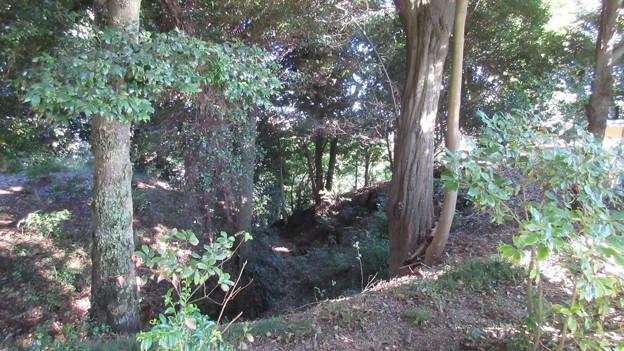 小山城(吉田町立 能満寺山公園)三の丸外堀