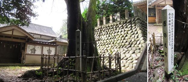 高天神城(掛川市)高天神社・西の丸