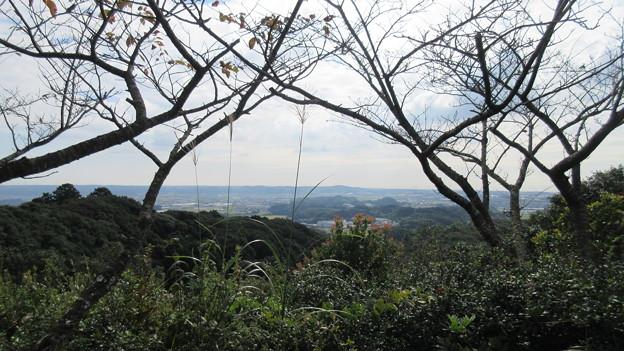 高天神城(掛川市)馬場平より南東