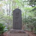 久米川古戦場(東村山市)将軍塚