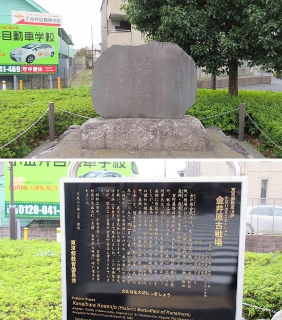 金井原(小金井市)古戦場考察地