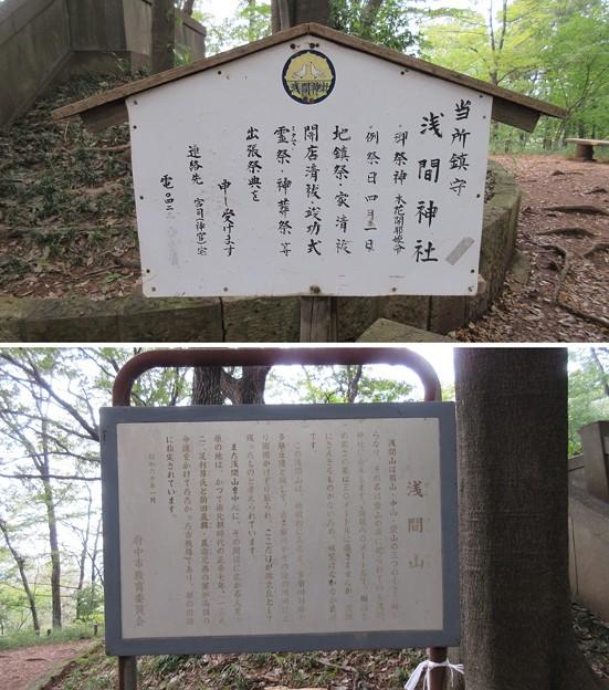 浅間神社(府中市)浅間山山頂
