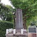 分倍河原古戦場(府中市営 新田川分梅公園)古戦場碑