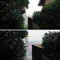 Photos: 関戸城(多摩市)金比羅宮より北