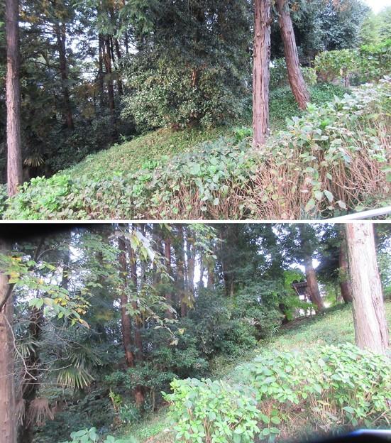 関戸城(多摩市)城塁